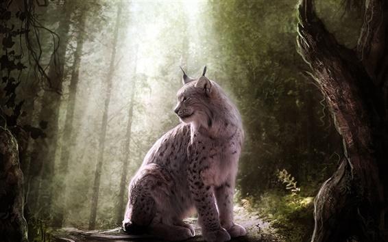 壁紙 オオヤマネコ、野生猫、森、光
