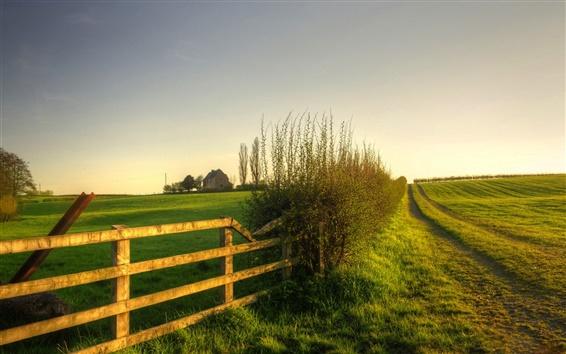 Обои Природа пейзажи, зеленый, луг, трава, забор