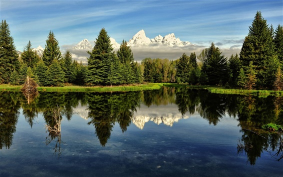 Papéis de Parede Cenário da natureza, lago, árvores, reflexão da água