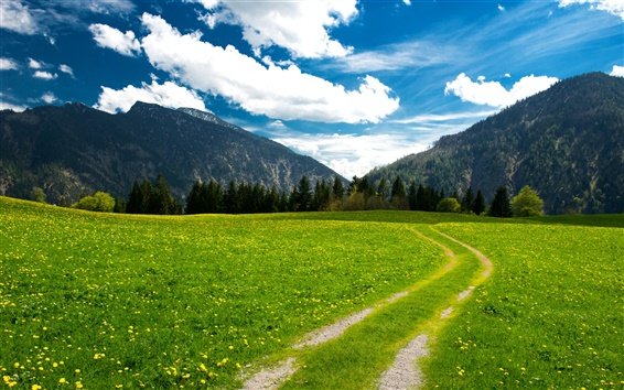 Wallpaper Pasture, the Bavarian Alps, mountains, trees, green field, sky, clouds