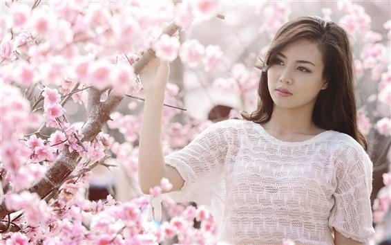 壁纸 粉红色的樱花,亚洲女孩的白色衣服