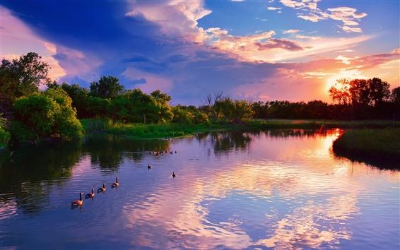 Wallpaper USA, Kansas, Wichita, Chisholm Creek Park, sunset, lake, trees, ducks