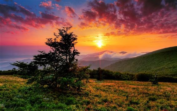 Wallpaper USA, North Carolina, morning, clouds, sunrise, mountains, hills, trees