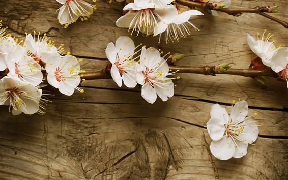 Wallpaper White cherry flowers on the desk