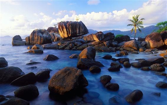 Обои Anse Soleil, Остров Маэ, Сейшельские острова, берег, камни