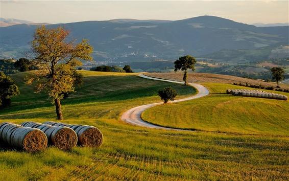 Wallpaper Hills, fields, trees, road, dusk