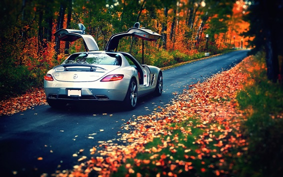 Wallpaper Mercedes-Benz SLS silver car in the autumn