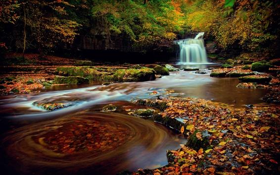 壁紙 イングランド北部、ヨークシャー、森、滝、紅葉、秋、水