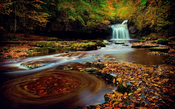 Обои Северная Англия, Йоркшир, лес, водопад, листва, осень, вода