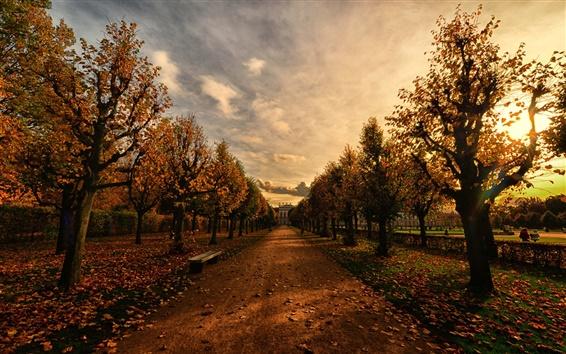 Wallpaper Park, path, bench, trees, autumn, dusk