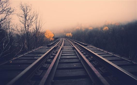 Wallpaper Railway, dawn, fog, trees, fall