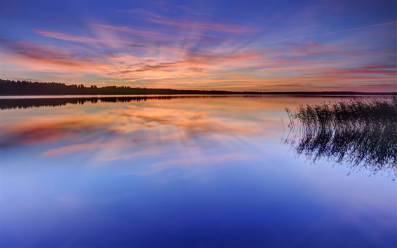 Fondos de pantalla Suecia, Karlstad, lago, agua, hierba, árboles, noche, puesta del sol, reflexión