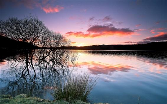 Wallpaper Trees, lake, water reflection, sunset, twilight
