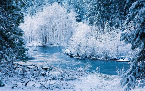 Wallpaper Winter nature scenery, white snow, trees, river