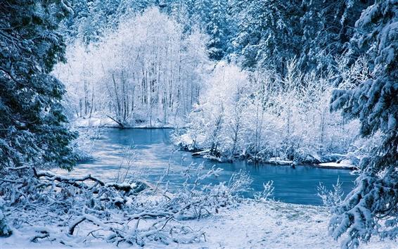 Обои Зима природа пейзаж, белый снег, деревья, река