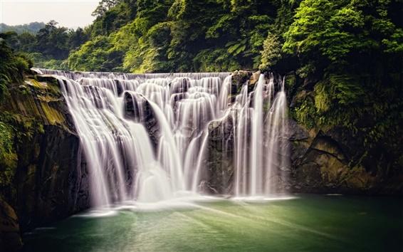 Обои Красивый водопад, природа, Шифэн Водопад, Тайвань, лес