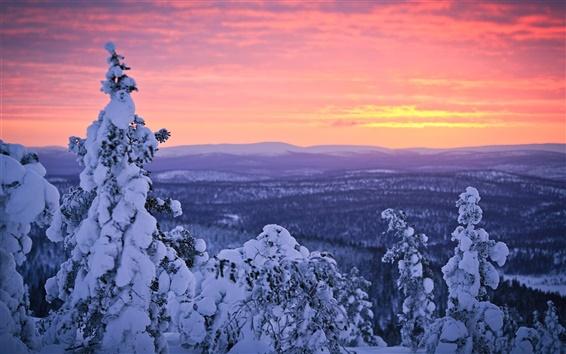 Fond d'écran Finlande, Laponie, neige d'hiver, forêt, coucher de soleil, ciel