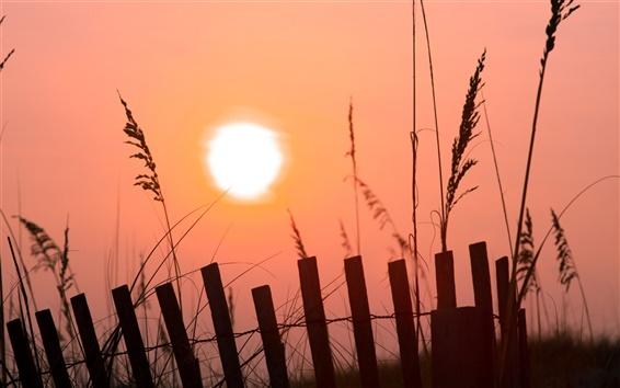 Fond d'écran Le lever du soleil du matin, ciel rose, soleil, barrière, herbe