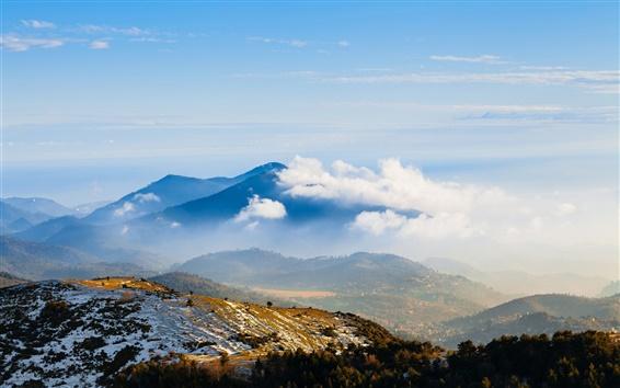 Wallpaper Mountain peaks, trees, snow, winter, morning