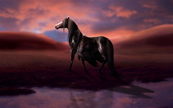 Wallpaper Rendering horse, wings, pegasus, water, clouds