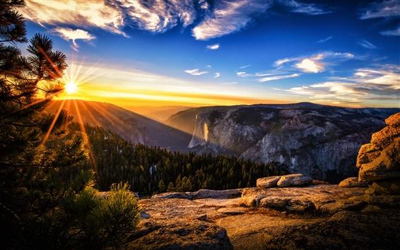 Fond d'écran Lever paysage, montagnes, forêt, les pins, les rayons du soleil