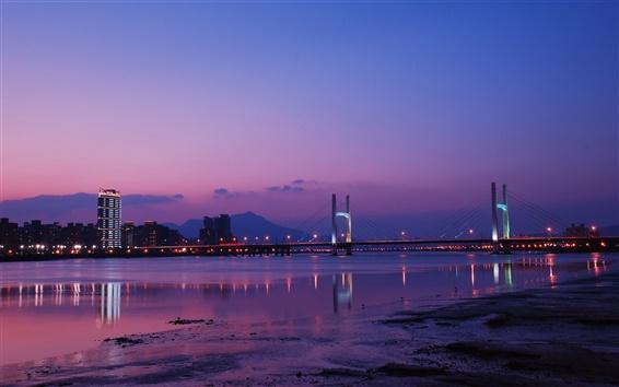 Wallpaper Taiwan, Taipei, city night, bridge, lights, river, purple sky