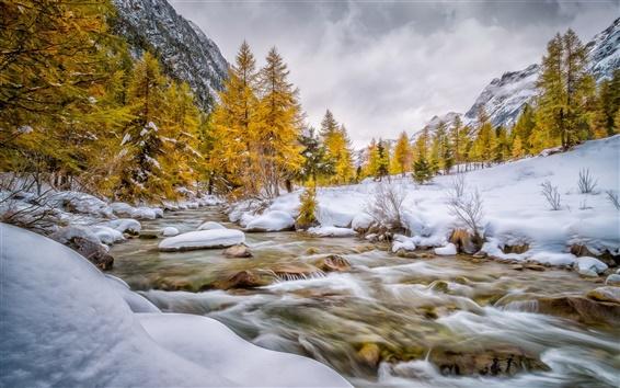 Fond d'écran Val Bever, Engadin, Suisse, hiver, neige, arbres, rivière, blanc