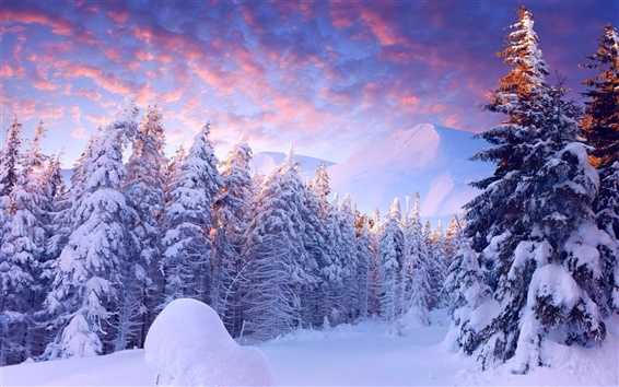 Wallpaper Winter, snow, trees, mountains, sky, clouds, cold