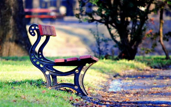 Wallpaper Bench, park, leaves, grass, path, fall