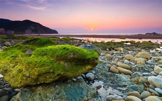 Wallpaper Sea, beach, rocks, stones, moss, morning, dawn, sunrise