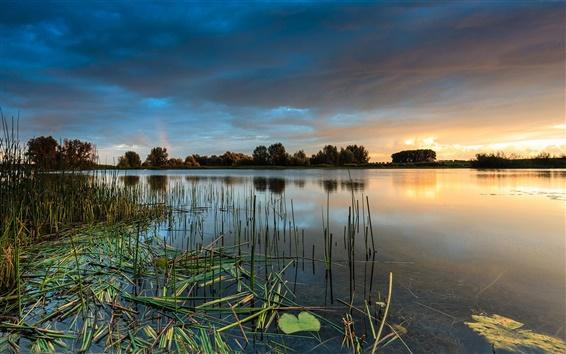 Fond d'écran Eau, herbe, arbres, lac, coucher de soleil, ciel nuageux