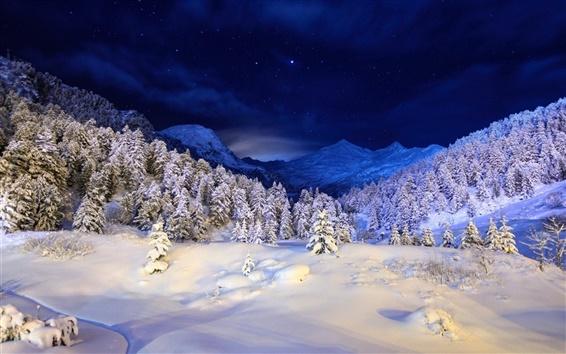 Fond d'écran Nuit d'hiver, les montagnes, les étoiles, la neige, la forêt, les arbres