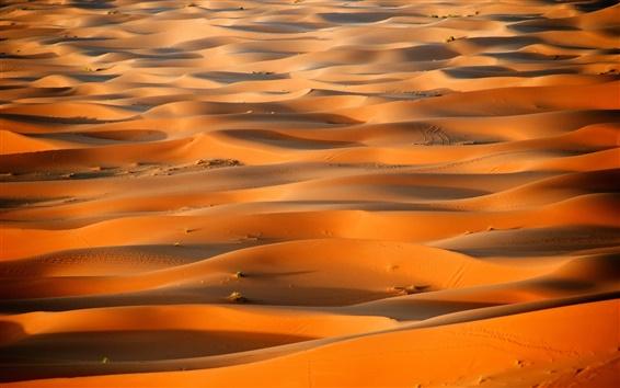 Wallpaper Africa, Morocco, desert, Sahara dunes