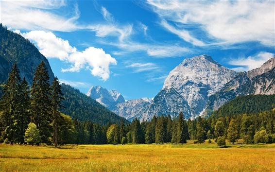 Wallpaper Alpes, mountains, blue sky, clouds, grass, forest, autumn
