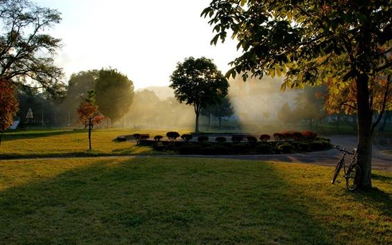 Wallpaper Autumn park, sunrise, bike, trees