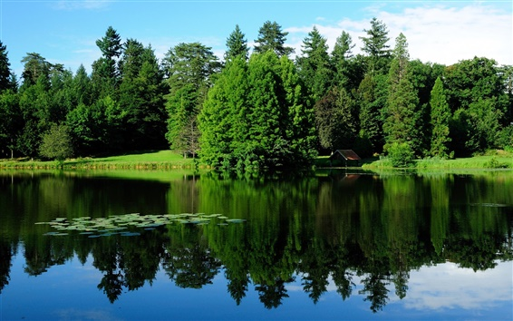Wallpaper France, nature landscape, trees, greenery, lake, water reflection