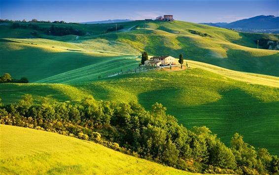 Обои Италия, Тоскана, солнечный свет, лето, сельская местность, деревья, небо, зеленые поля