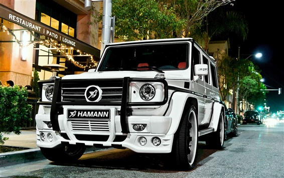 Wallpaper Mercedes-Benz G55 Hamann white car