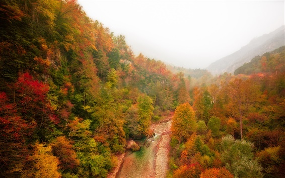 Wallpaper Mountain, forest, river, autumn, fog, red leaves