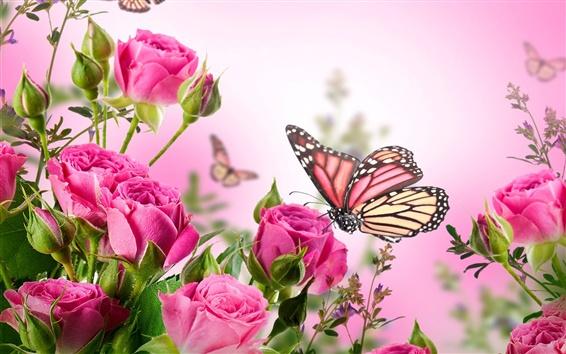 Wallpaper Pink roses, flowers, butterflies