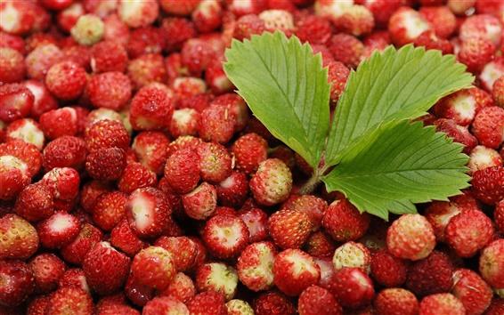 Wallpaper Red berries, strawberries, green leaves