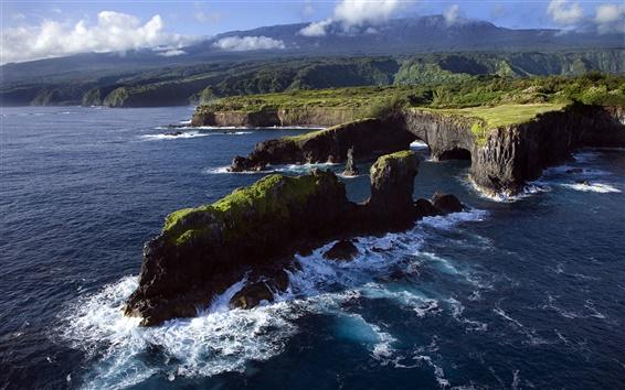 Fond d'écran Côte rocheuse, océan Pacifique, Maui, Hawaii