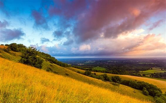 壁紙 サウスダウンズ、イングランド、朝、夜明け、雲、フィールド、丘、木