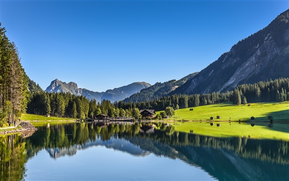 Wallpaper Tyrol, Austria, lake, mountains, forest, water reflection