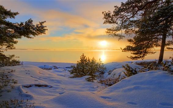 Papéis de Parede Da neve do inverno, lago, árvores, pegadas, à noite
