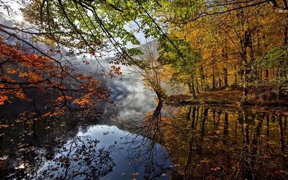 Wallpaper Autumn landscape, river, leaves, trees, fog, water reflection