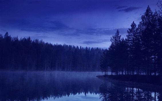 Fondos de pantalla Tarde, bosque, río, naturaleza, azul