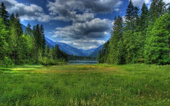 Fond d'écran Allemagne, Berchtesgaden, Bavière, herbe, lac, forêt, montagnes, nuages