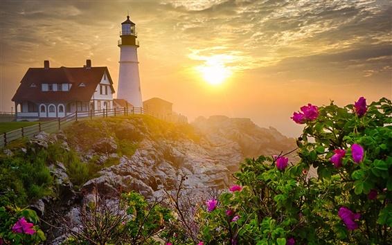 Wallpaper Lighthouse, morning, rocks, flowers, sunrise