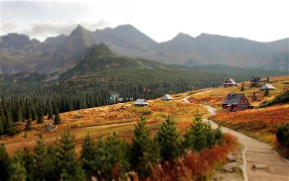 Wallpaper Slovakia, Western Carpathians, Tatra Mountains, house, trees, autumn